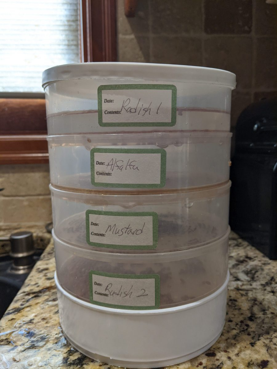Day 1 - Stacked and Labelled